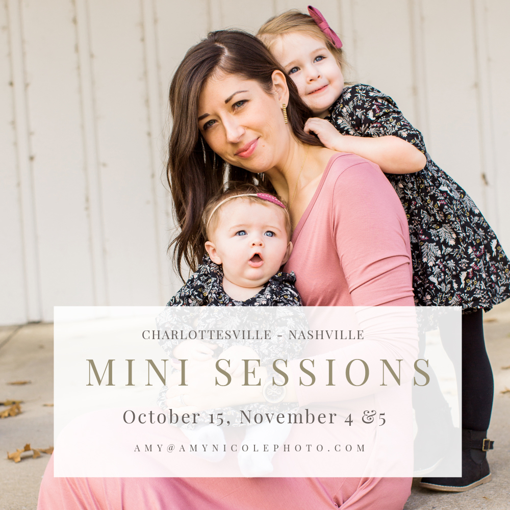 charlottesville fall mini sessions