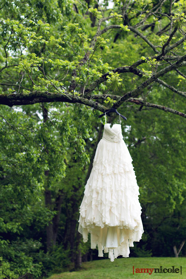 Becky Robertson Wedding Dress
