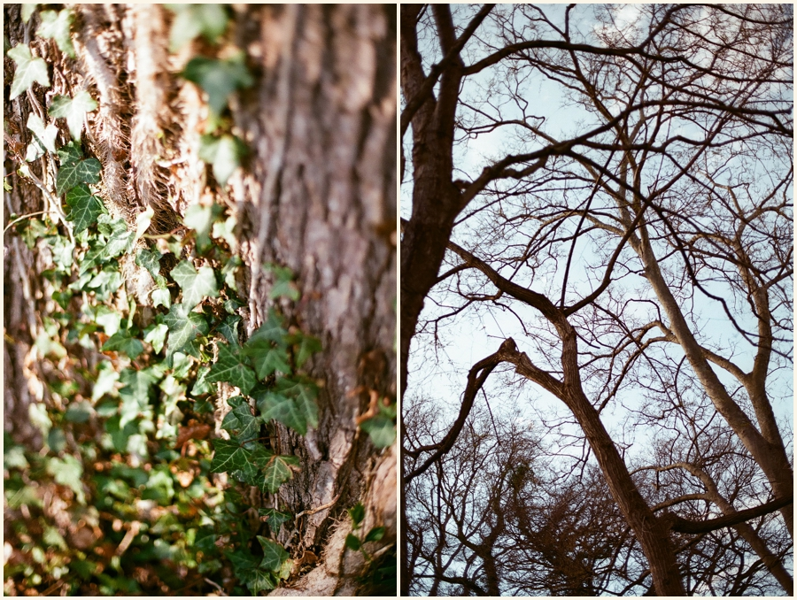 35mmfilmsample_0033